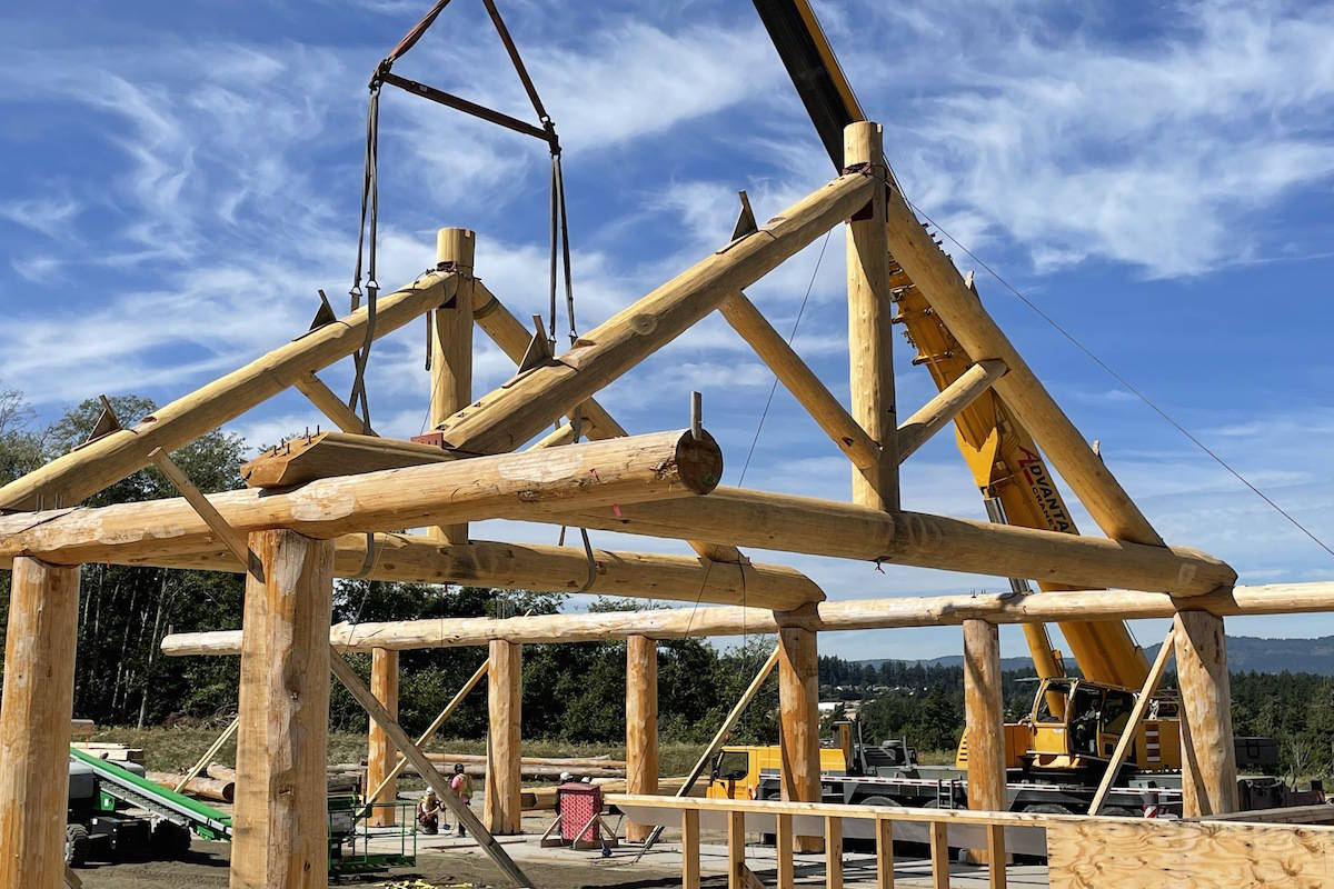 Four cedar trusses are raised onto the Tsawout First Nation's new bighouse in the first week of August. A 2009 fire destroyed the former cultural space. (Courtesy Dave Watson/Tsawout First Nation)