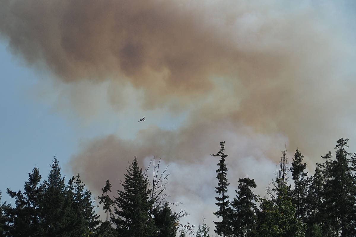 B.C. Wildfire Service crews battle the Mt. Hayes wildfire near Ladysmith, which has burned 70 hectares. (Chris Bush/News Bulletin)