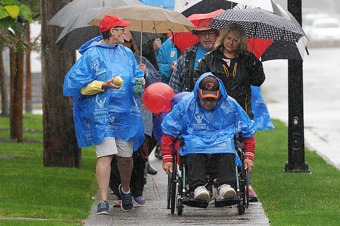 About 40 people took part in the Parkinson's SuperWalk along Spadina Avenue in Chilliwack on Sept. 17, 2016. This year's walk is virtual and takes place on Saturday, Sept. 11, 2021. (Jenna Hauck/ Chilliwack Progress file)