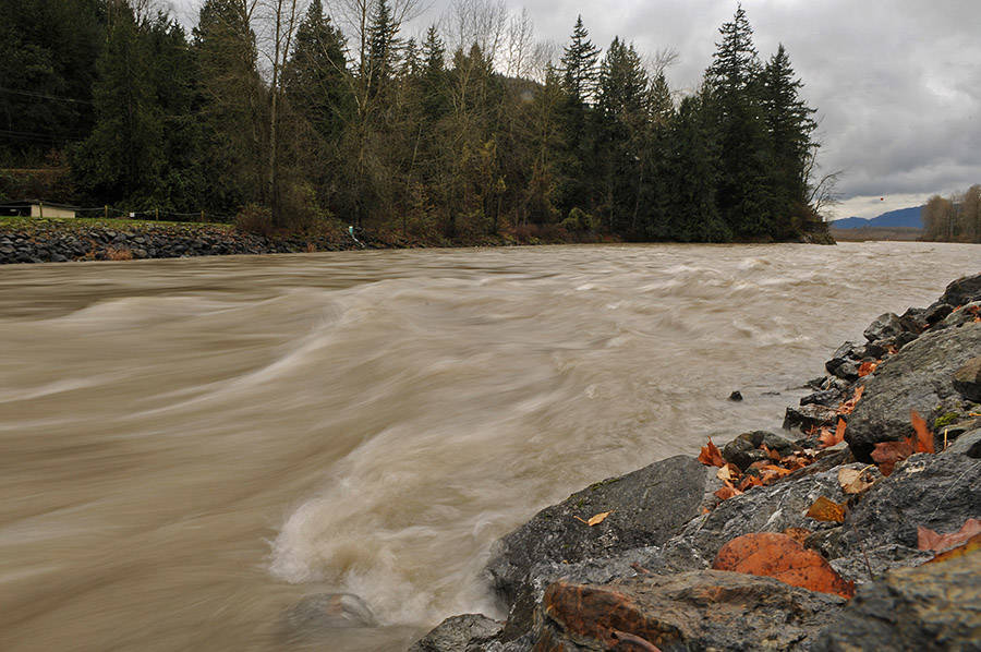 Flood risk assessment for the Vedder River is one of 38 flood planning projects that has been awarded provincial funding through the Community Emergency Preparedness Fund program. (Jenna Hauck/ Chilliwack Progress file)