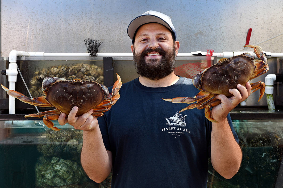 Rodrigo Pinto, General Manager for the Vancouver outlet for Finest At Sea holds up live crabs in front of a  shellfish tank. Don Denton photograph