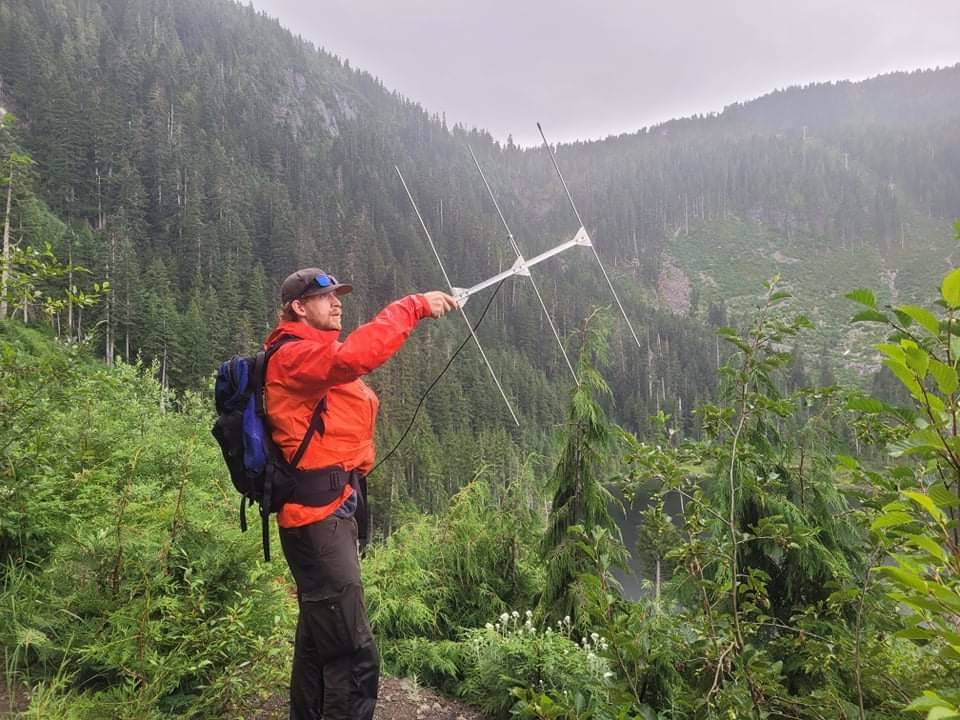Kevin Gourlay uses radio telemetry to track marmots. Photo courtesy Kevin Gourlay.