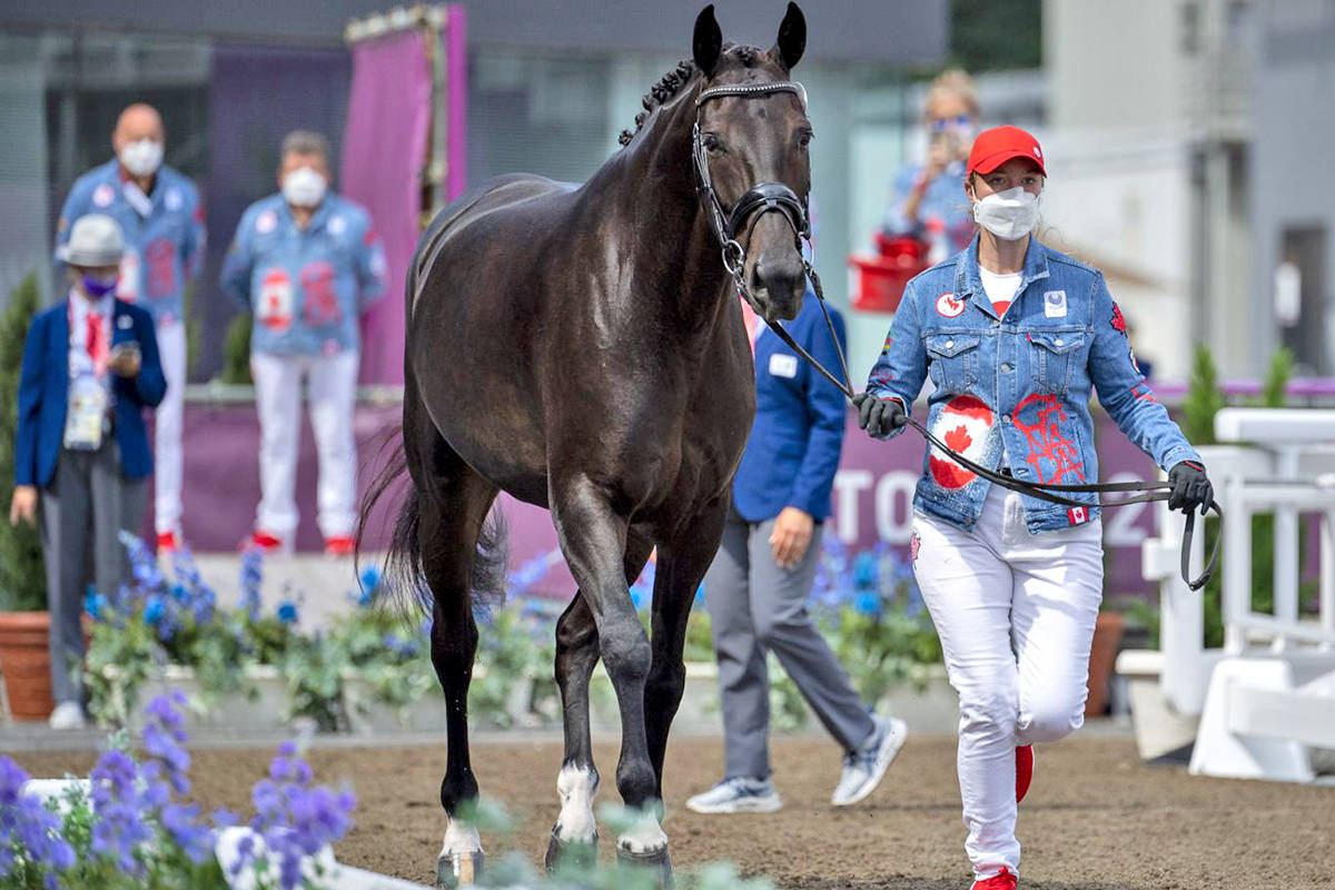 Lillie Durbin, groom for Lauren Barwick of Aldergrove, presents Sandrino at the para-dressage horse inspection, held Aug. 25, 2021, at the Tokyo 2020 Paralympic Games in Japan. (Jon Stroud Media/special to Langley Advance Times)