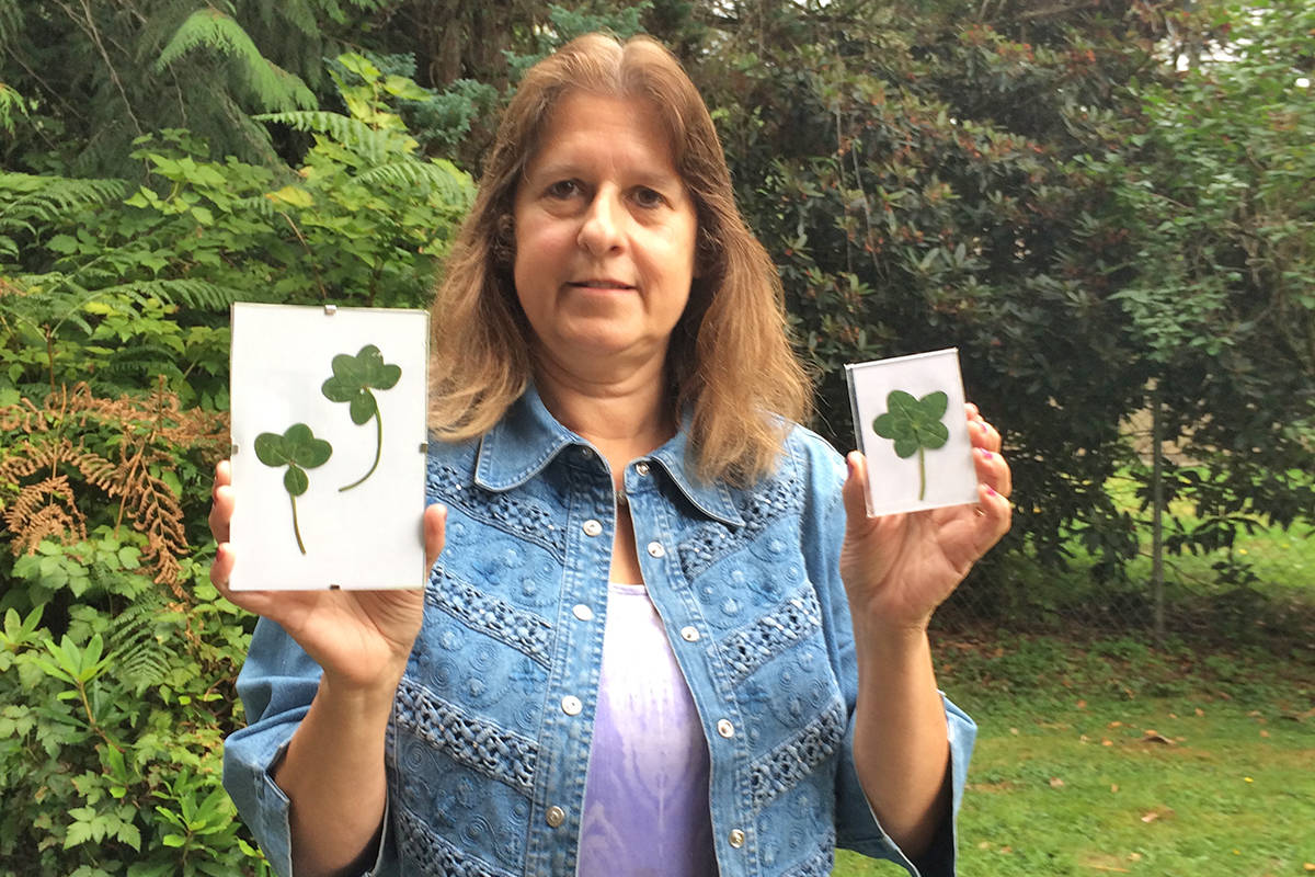 Tina Farrell will put three unique clover leaves into picture frames and hang them in her husband's room at a nearby care home. (Tina Farrell/Special to the Aldergrove Star)
