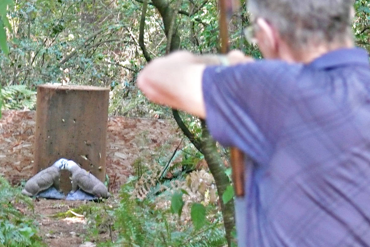 An archer draws a bead on two Styrofoam badgers in the woods near the Langley Road and Gun Club. which hosted a 3D archery event on Sunday, Aug. 29. (Dan Ferguson/Langley Advance Times)