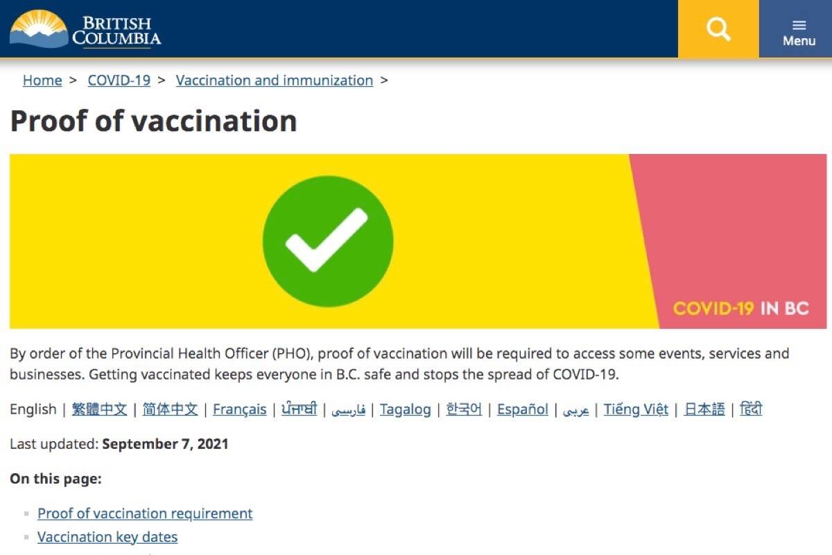 Image of B.C. health ministry web page that links to COVID-19 vaccine record. Link in story below. (B.C. government)