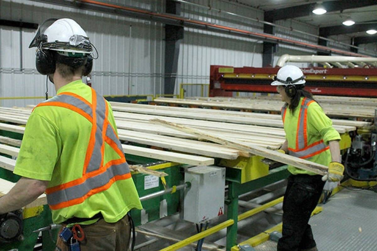 Sawmill workers in Princeton, B.C., 2018. The B.C. government has committed to redistributing Crown forest resources to provide a greater share for Indigenous communities. (B.C. government photo)
