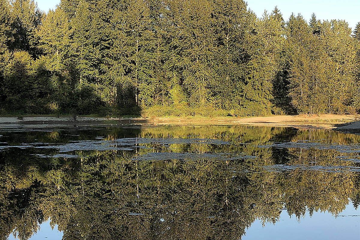 Gerry and Wies Devries captured this late afternoon reflections off the water at Noel Booth Park recently. Summer's not quite over, but fall is in the offing. (Special to Langley Advance Times)