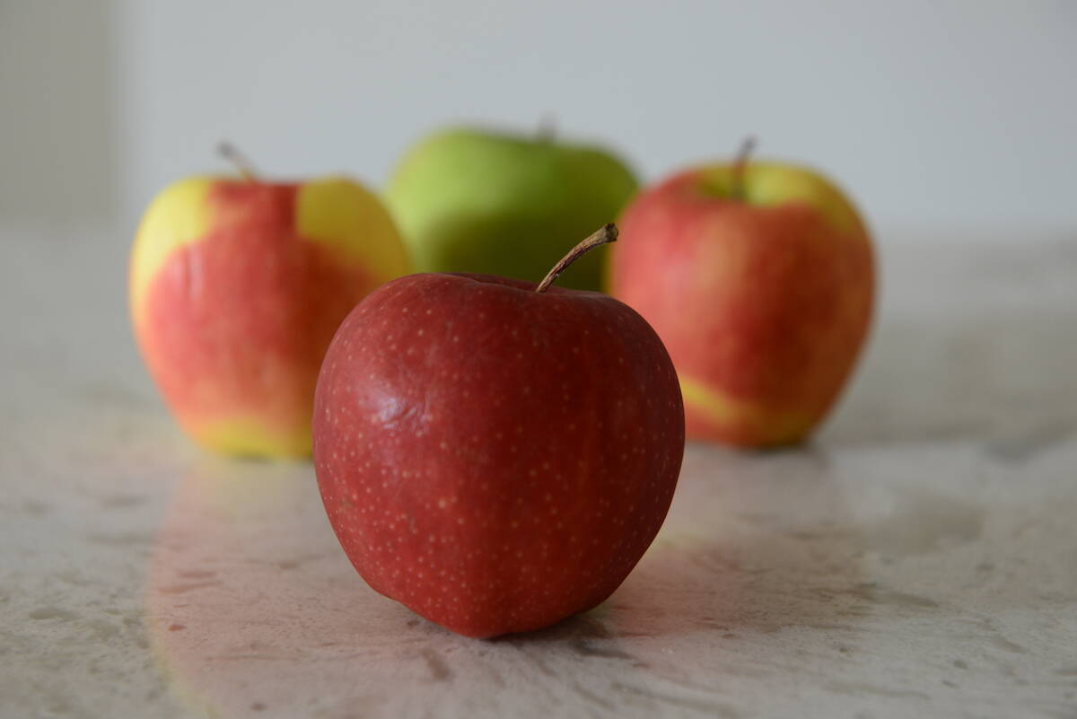 Saturday, Sept. 18, 2021 is Eat an Apple Day. (Jenna Hauck/ Chilliwack Progress file)