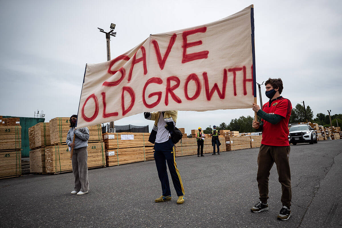 FILE – Protesters hold a banner as they stand in front of stacks of lumber during a demonstration against old-growth logging, at Teal-Jones Group sawmill in Surrey, B.C., on Sunday, May 30, 2021. Teal-Jones holds licenses allowing it to log in the Fairy Creek Watershed on Vancouver Island. THE CANADIAN PRESS/Darryl Dyck