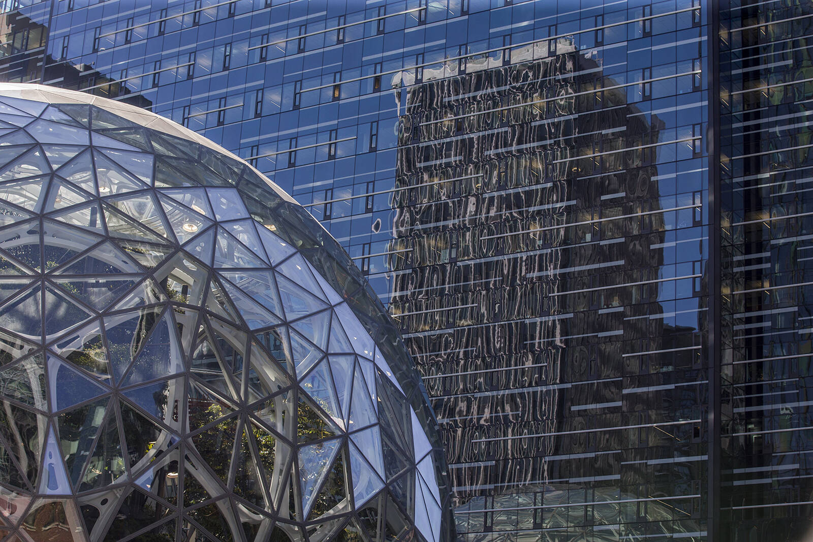 An Amazon tower is reflected in the Amazon Day 1 building above the Amazon Spheres in Seattle. Amanda Snyder | Seattle Times An Amazon tower is reflected in the Amazon Day 1 building above the Amazon Spheres in Seattle. Amanda Snyder | Seattle Times