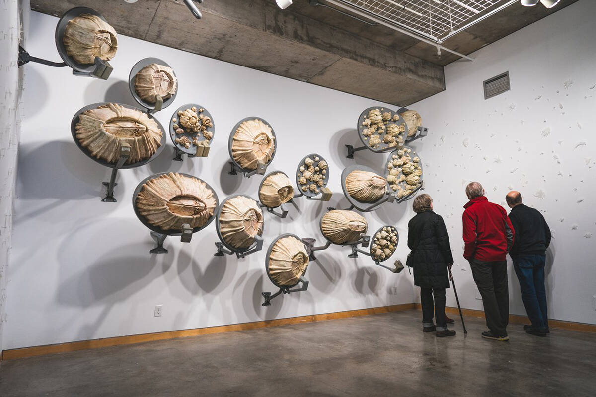 If you're eager for some culture, visit the Kamloops Art Gallery or Kamloops Symphony. Photo: Dylan Sherrard/Tourism Kamloops