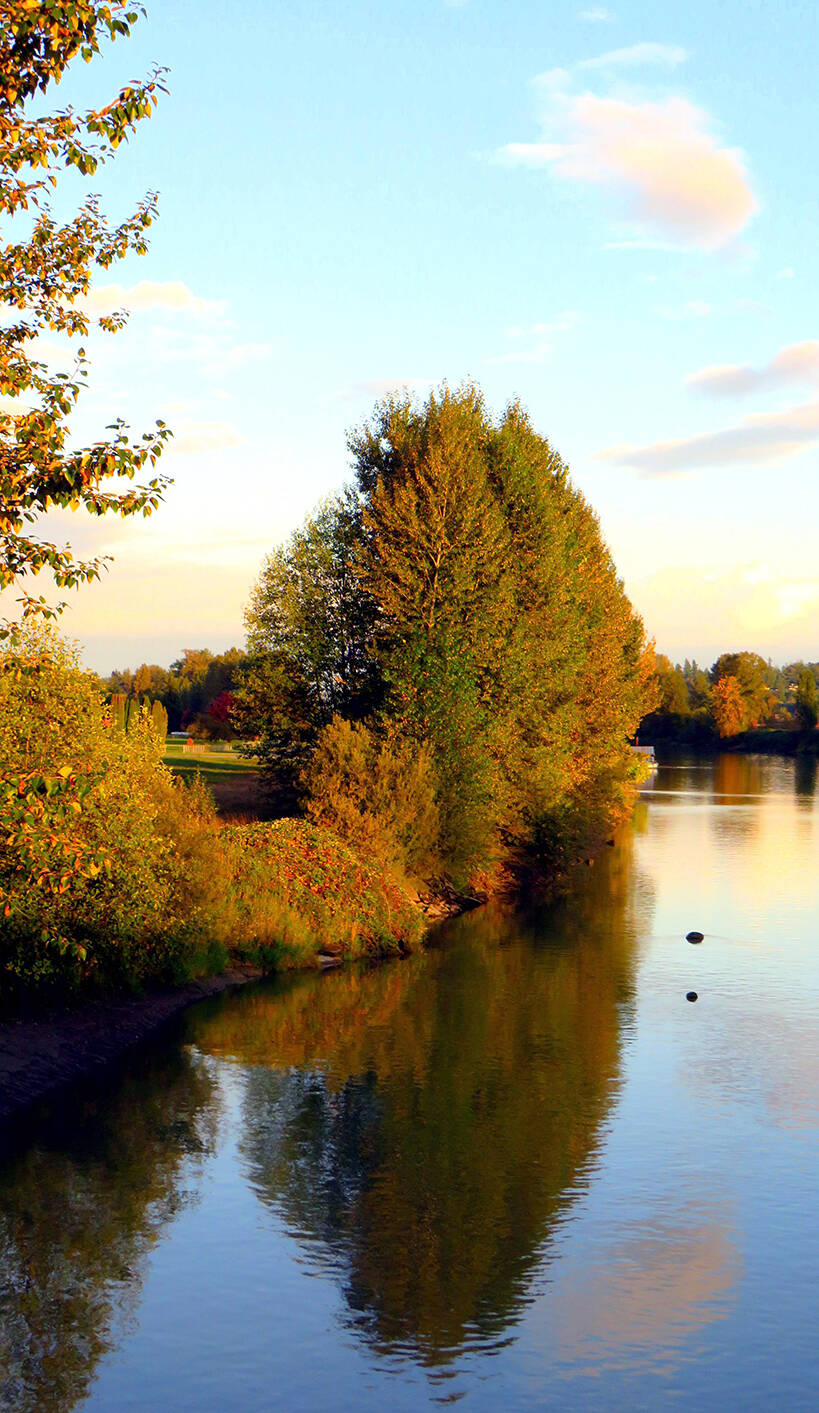 """On the last day of September, Maryalice Wood captured this """"stunning scene"""" during what she called golden hour on the Bedford Channel in Fort Langley. (Special to Langley Advance Times)"""
