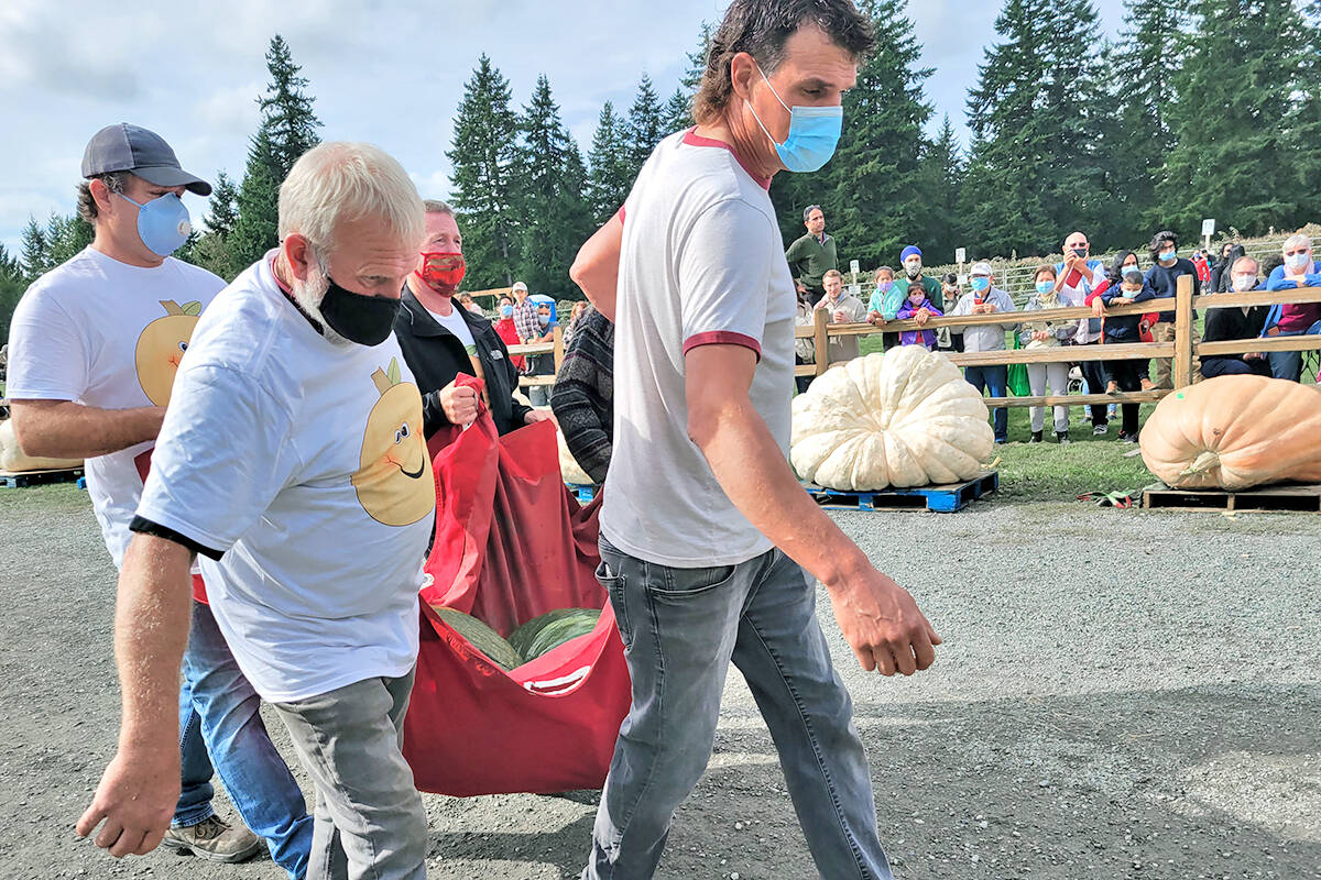 An estimated 1,000 people turned out for the annual giant pumpkin contest and weigh-in at Langley's Krause Berry Farms and Estate Winery on Saturday, Oct. 2. Two new B.C, records were set. (Dan Ferguson/Langley Advance Times)