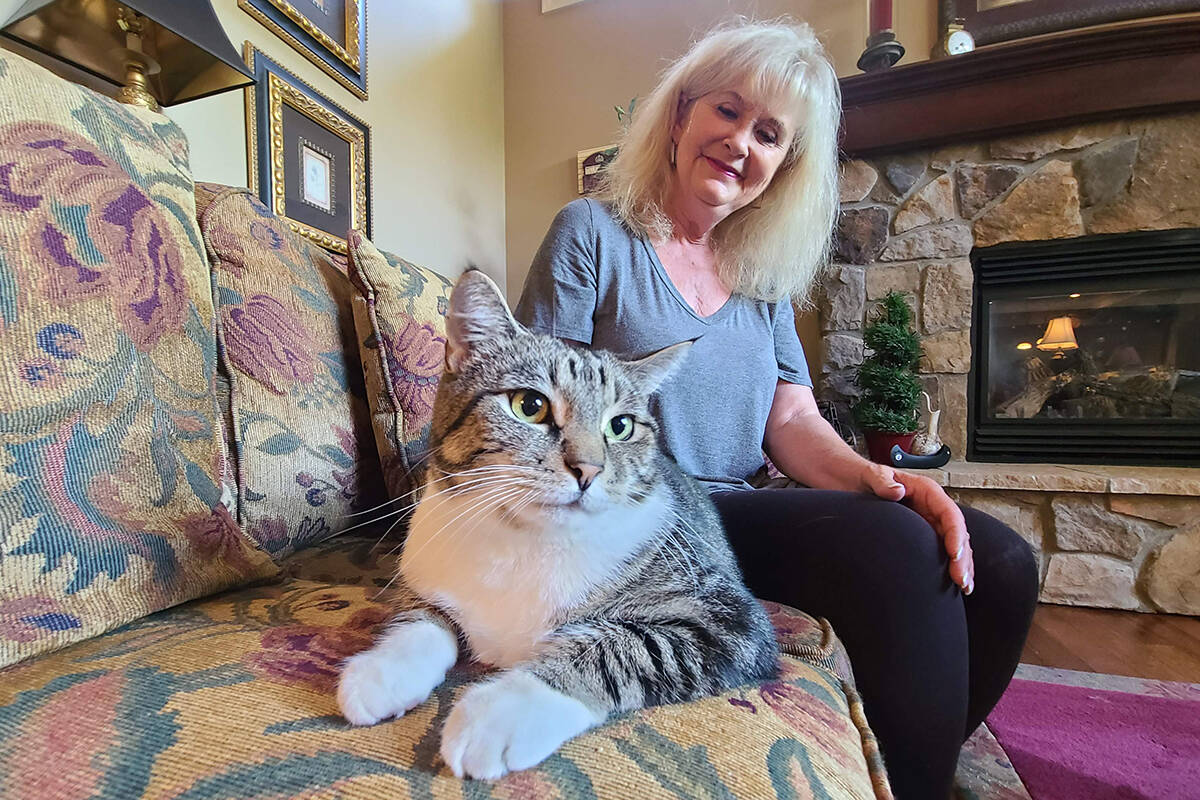 Ocean Park resident Joanie Webster was stunned to be reuinted with her cat Pete who was missing for nearly three years. (Aaron Hinks photo)