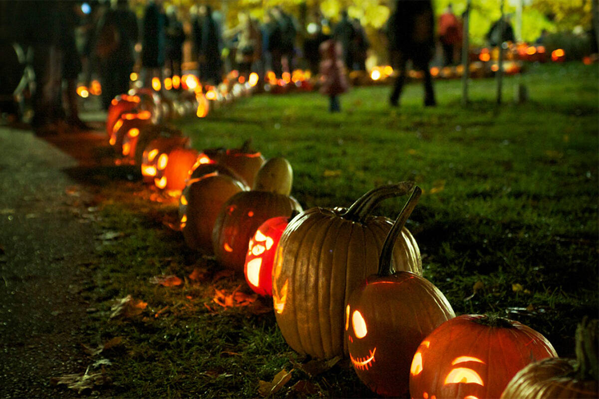 Staff with Langley Environmental Partners Society will carve 50 pumpkins to line the path of the Demonstration Garden for the Oct. 20 pumpkin walk. (Alexandra Falconer/Special to Langley Advance Times)