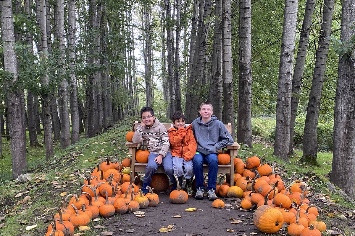 Aldor Acres is open daily from 9 a.m. to 6 p.m. until Oct.31 (Madison McKenzie/Aldergrove Star)