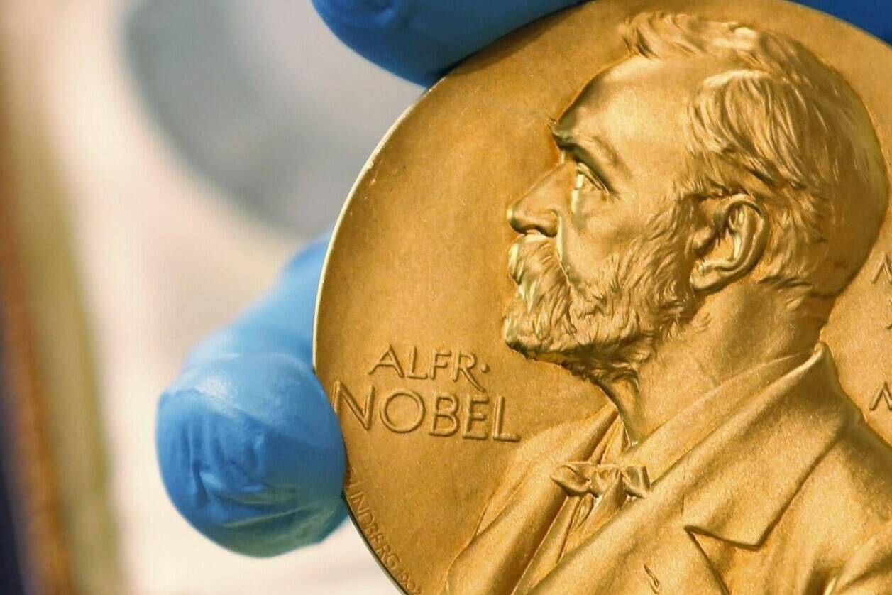 FILE - In this April 17, 2015 file photo, a national library employee shows a gold Nobel Prize medal. The Nobel Peace Prize will be awarded on Friday Oct. 8, 2021. (AP Photo/Fernando Vergara, File)