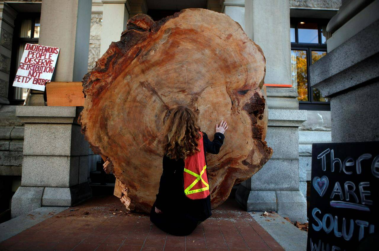 Protesters to old-growth logging used a 1200-year-old slice of a tree to block an entrance in the west wing where British Columbia Premier John Horgan's office is located in the legislature in Victoria on Monday, Oct. 4, 2021. THE CANADIAN PRESS/Chad Hipolito