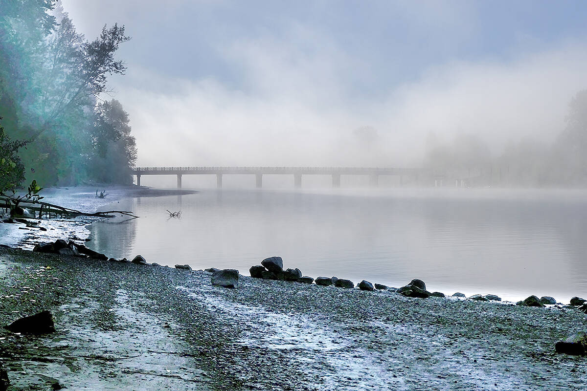"""As autumn engulfs Langley, fog starts to appear over the fields and along the Fraser River making things truly mystical, according to Joy Ruffeski. """"An early morning walk at the Brae Island Regional Park with the sunlight filtering through trees and shimmering on the wet sand was magical. In the distance the bridge to the island from Fort Langley peeked through the mist and we got a brief glimpse of the other side of the river."""" (Special to Langley Advance Times)"""