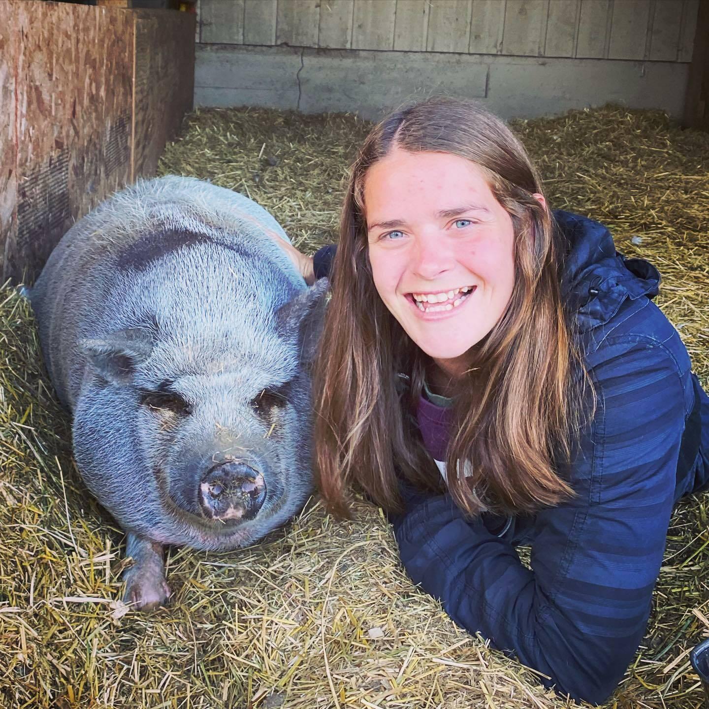 Kensington Prairie Farm has 105 alpacas and 12 other kinds of animals. (Kensington Prairie Farm/Facebook)