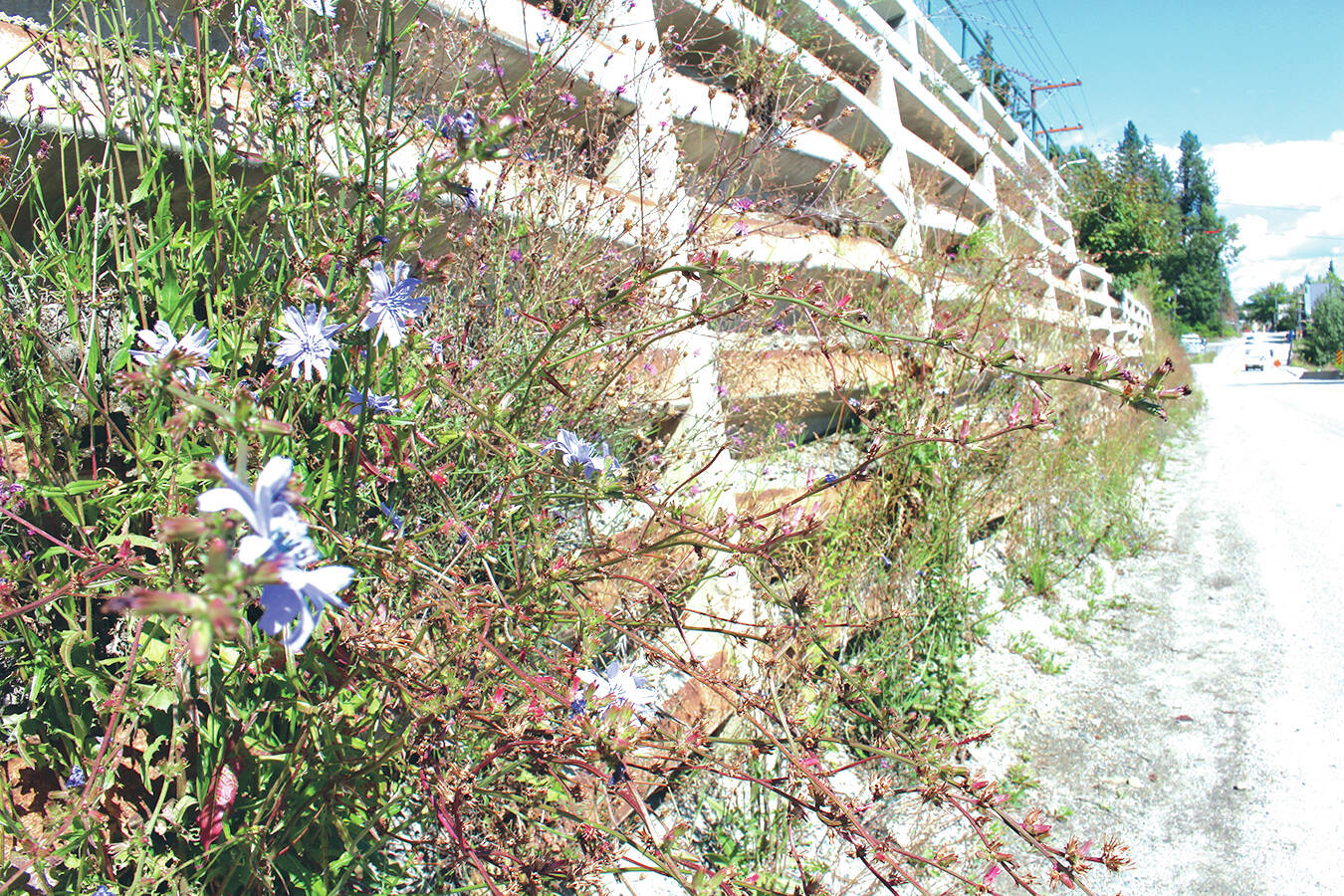 A retaining wall on Highway 3B/22 in Rossland in 2016. (Black Press Media files)