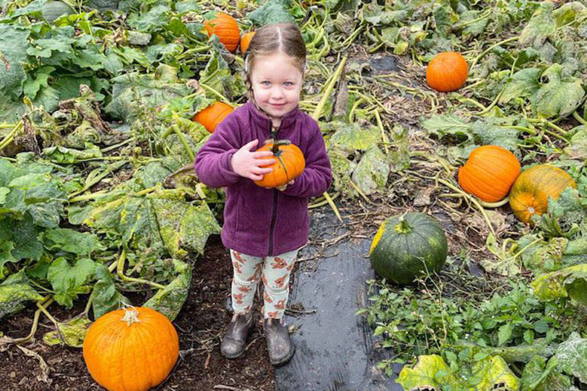 Aldergrove community enjoying a day full of fall activities (Loft Farms/Instagram)