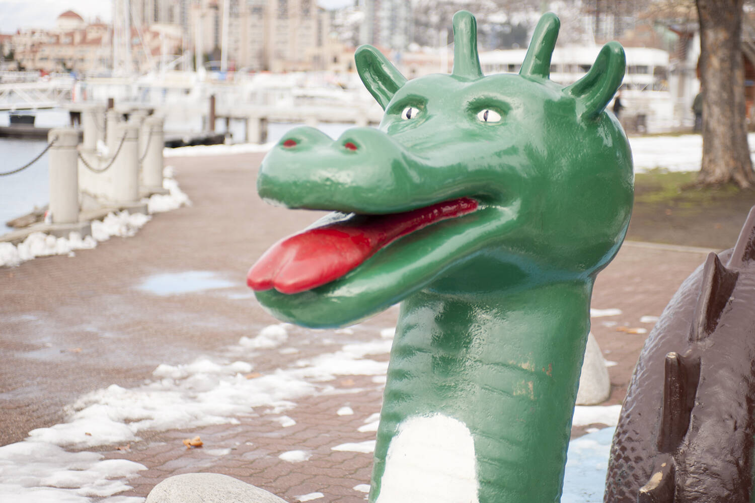 The legal rights to an elusive British Columbia lake creature known as Ogopogo have been transferred to an alliance of Indigenous nations who say the legendary figure has always been part of their centuries-old spiritual teachings. (Michael Rodriguez - Capital News)