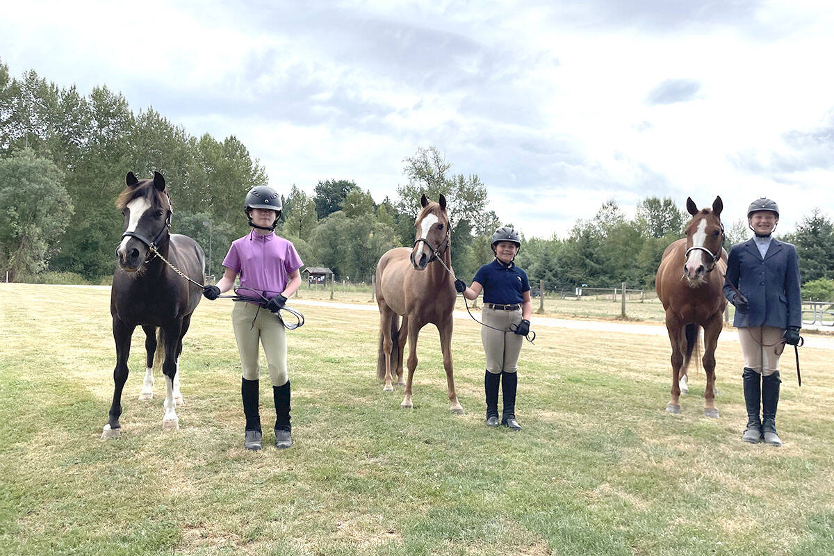Members of the 4H Club learning about their horses (Jenny Barnes/Special to The Star)
