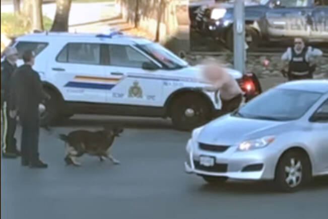 Nanaimo RCMP, with the assistance of a police dog, arrested a man who allegedly uttered threats and was walking in and out of traffic downtown on Monday, Oct. 18. (Image courtesy Porsha Paladini)