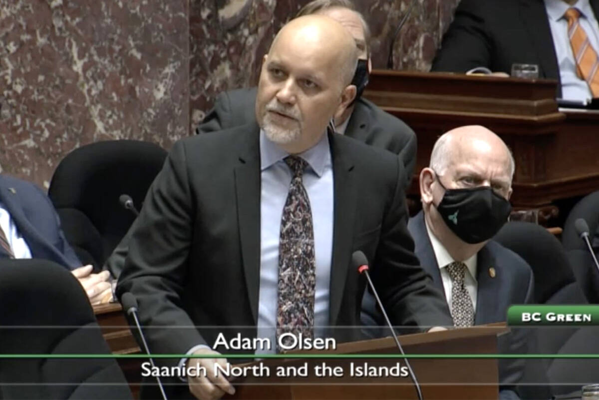 Adam Olsen, MLA for Saanich North and the Islands, speaks about drug use during a speech in the legislature. (Government of British Columbia)