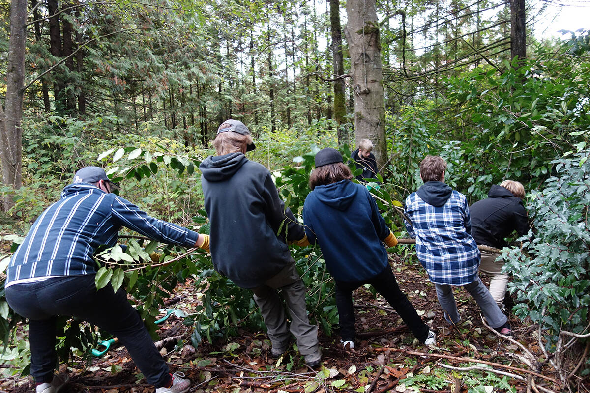 Grade 11 and 12 students from Brookswood Secondary and R.E. Mountain Secondary volunteered with the Lower Mainland Green Team on Thursday, Oct. 21, 2021 at Williams Park. (Ashton Kerr/Special to Langley Advance Times)